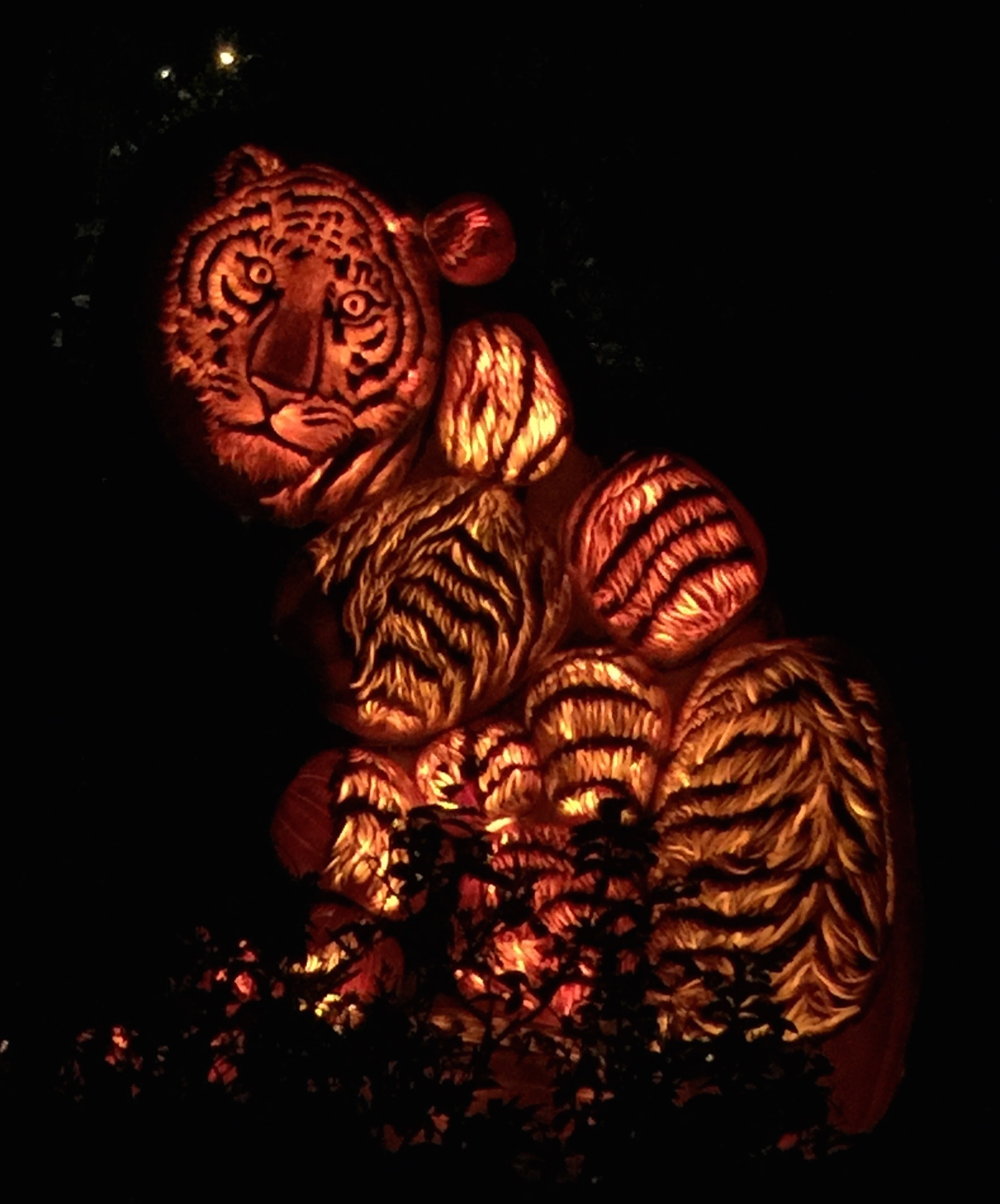 2015 Rise of the Jack O'Lanterns at Descanso Gardens – Creepy LA ...