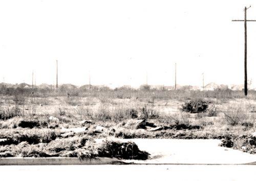 The Black Dahlia's remains dumped here – 3800 block S. Norton Dr.