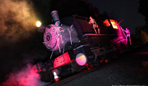 Ghost-Train-2015_8402