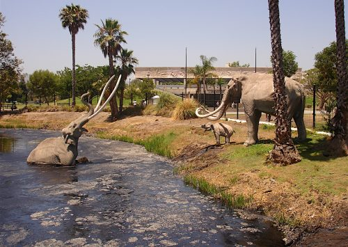 Amnesiacs, hoaxes, and homicide cover-ups at the La Brea Tar Pits
